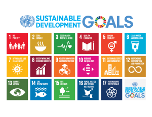 Where Does It Come From? and the SDGs
