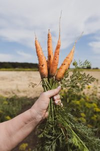 how to love our clothes like we love our carrots